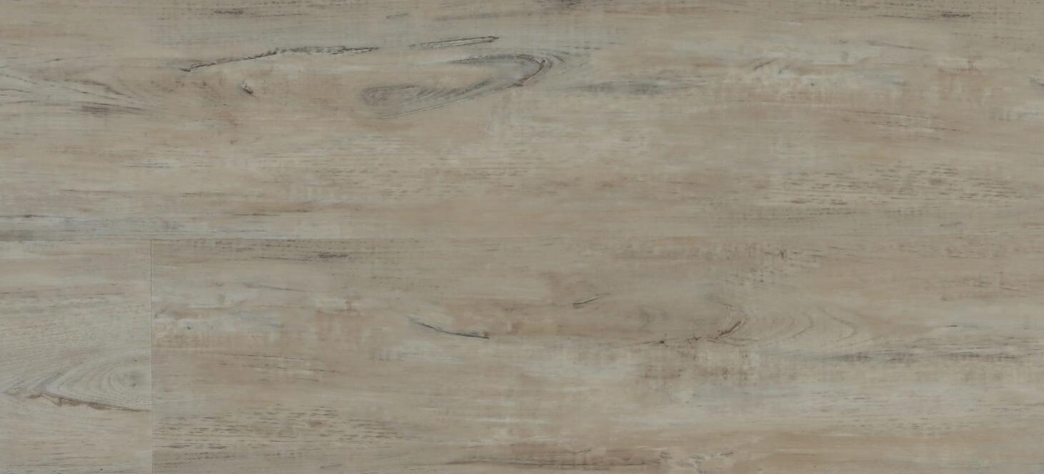 4083-Venderbilt[1]